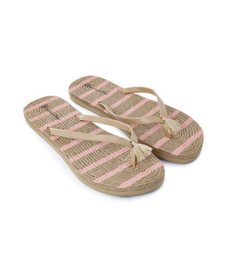 Slipper stripe, Roze