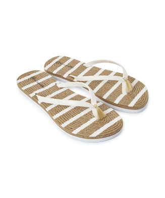Slipper stripe, Wit
