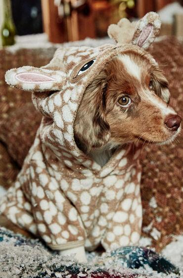 Hunkemöller Fleece honden onesie Bruin