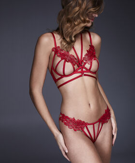 String Erica, Rood