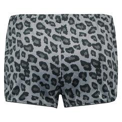 Short Velours Leopard, Grijs